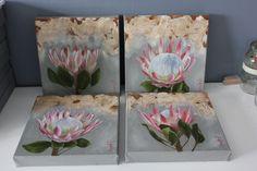 Proteas, oil on canvas, 25x25cm. www.christellepretoriusart.co.za