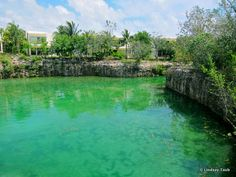 Suites overlooking cenote  Blue Diamond Resort, Riviera Maya