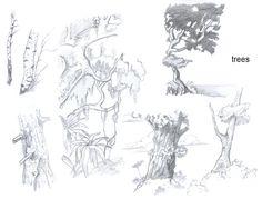 [research_0000_tree+decidous.jpg]