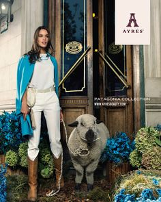 @Ayres Healy Patagonia Collection