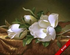 MAGNOLIA-BLOSSOMS-FLOWERS-ON-GOLD-VELVET-OIL-PAINTING-ART-REAL-CANVAS-PRINT