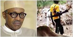 Farmers vs herdsmen: Federal government to hold national conference in June to end clashes