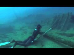 Dreamlist:  Learn how to spearfish and hold my breath for 3 min +.