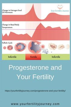 Progesterone and your Fertility - the symptoms of progesterone deficiency. Do you have it? Natural Fertility, Fertility Diet, Progesterone Deficiency, Pcos And Getting Pregnant, Pcos Pregnancy, Polycystic Ovarian Syndrome, Menstrual Cycle, Conceiving, Women's Health