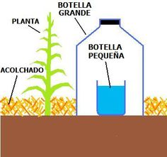 Irrigation drip and self-watering - Solar drip irrigation using plastic bottles - see other illustrations on the page Micro Irrigation, Drip Irrigation, Potager Bio, Cedar Garden, Water Wise, Self Watering, Aquaponics System, Earthship, Diy Solar