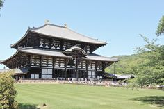 todaiji temple in nara: my favourite tourist attraction in Japan.