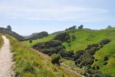 sonderfahrt: Golden Bay, Pupusprings (Wasserquellen), Farewell Spit und Abel Tasman