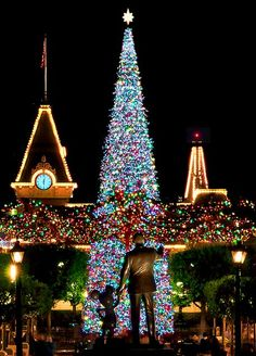 Walt Disney and Mickey Mouse at Main Street U. during Christmas in Disney World. Disneyland Christmas, Disney World Christmas, Noel Christmas, All Things Christmas, Christmas Lights, Christmas Decorations, Xmas, Holiday Decor, Disney Holidays
