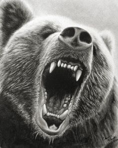 GRIZZLY ROAR  .part 2 by eidolic.deviantart.com on @deviantART