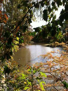 Fall 2014                                                                                                                                   Photo by CS Lent