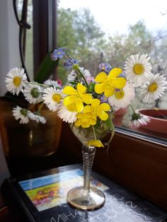 Ikebana, Glass Vase, Table Decorations, Furniture, Home Decor, Decoration Home, Room Decor, Home Furnishings, Home Interior Design