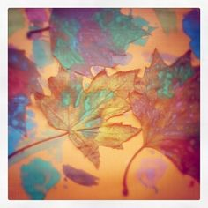 leafs, paint & contact paper