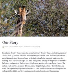 Read our Story :) Kruger National Park, Own Home, Natural Materials, Giraffe, Safari, African, Country, World, Nature