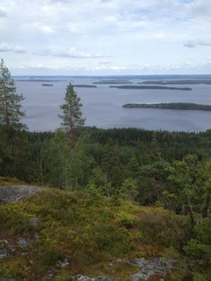 Great views, wild nature, silence, good food Wild Nature, Great View, Finland, Wildlife, Mountains, Beach, Water, Travel, Outdoor