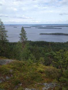 Great views, wild nature, silence, good food