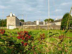 Photo of The Irish Workhouse Centre - Portumna, Co Clare, Ireland Trip Advisor, Centre, Irish, Clare Ireland, Wales, Plants, Photos, Tips, House