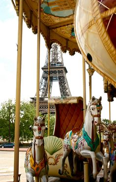 I would like to take a picture on this carousel in Paris.