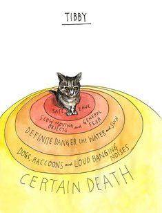 Danger zones for Tibby, the cat