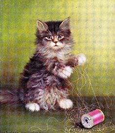 Corticelli vintage advertising card: a kitten playing with a Corticelli spool of silk thread (1910)