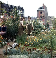 World War II, City garden on bombed site, Pictures shows an ATS girls admiring flowers in August 1944. (Photo by Popperfoto/Getty Images)