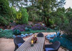 succulents mission canyon garden