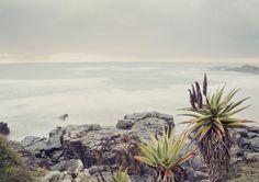"""""""White sea"""" © Natascha van Niekerk"""