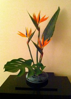 Client Arrangement: Anniversary Gift by The Flower Sculptor, via Flickr