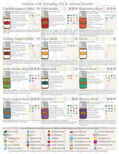 Sugar Scrub Diy Discover Printable Flyer - Wellness with Everyday Essential Oils Class - Flyer Handout - Aroma Decoder - PSK 2019 List Of Essential Oils, Essential Oil Diffuser Blends, Young Living Essential Oils, Cedarwood Essential Oil Uses, Frankincense Essential Oil Uses, Essential Oil Bug Spray, Thieves Essential Oil, Cedarwood Oil, Handout