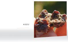 Aszu Hungary, Maps, Wine, Blue Prints, Map, Cards