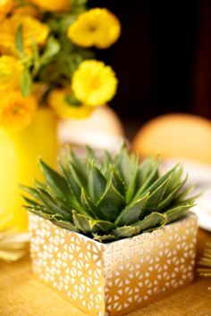 Retro succulent centerpiece | Anna Kim Photography | see more on http://burnettsboards.com/2014/02/stylish-honeymoon-looks/