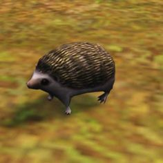 So Happy!!! I just found out The Sims 3 pets has Hedgehogs!! xD  OMG my favorite!!! :3