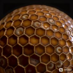 ArtStation - Honeycombs, Alexandr Gluhachev