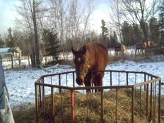 DIY round bale feeder