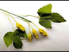Crepe paper flowers hops, perfect for fillers in any arrangements. Crepe Paper Flowers Tutorial, Tissue Flowers, Giant Paper Flowers, Diy Flowers, Flower Diy, Crepe Paper Crafts, Tissue Paper, Hops Plant, Sunflower Leaves