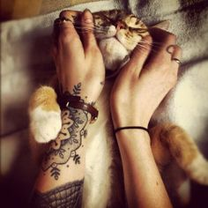 #mandala #arm #tattoo #cute #cat