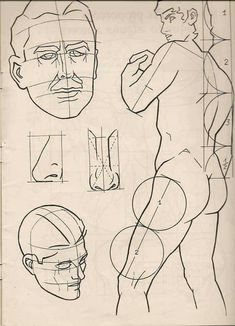 Anatomy Sketches, Anatomy Drawing, Body Reference Drawing, Art Reference, Drawing Heads, Drawing Course, Sketches Tutorial, Drawing Studies, Comic Drawing