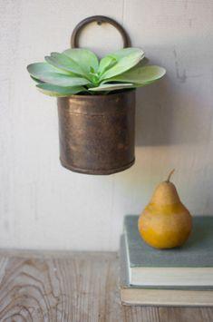 vaso-de-parede-rustico-de-ferro-com-suculenta-Hudson and Vine