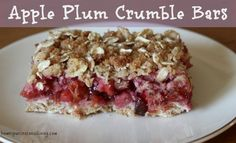 Apple plum crumble bars - a lightly sweet and crunchy treat perfect for fall days.