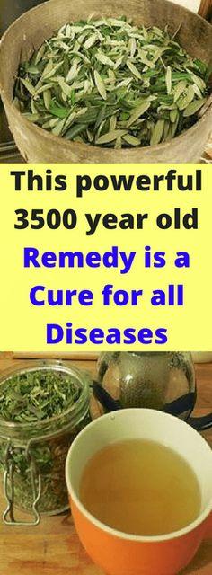 Garcinia cambogia 80 nz image 1