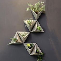 Cement Triangular Wall Vase This 3 dimensional triangular vase is the ideal way to make a plain wall pop. This attractive modern geometric design is the original vase with a simple, elegant design that can be used to add a modern decorative to