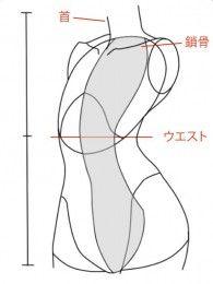 ナナメ向きの胴体の描き方 絵師ノート 描き方 描画レッスン 胴体