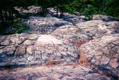 Turtle rocks at Petit Jean State Park. Ready for fall camping here!