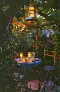 Enchanted backyard.