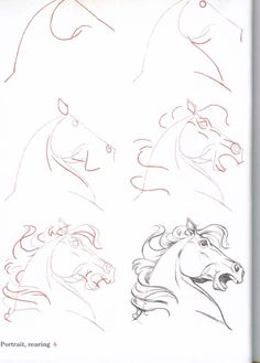 How to draw a horse drawings pinterest horse drawings and how to draw horses horse heaven ccuart Image collections