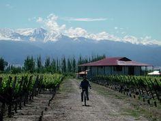 Argentina-Mendoza Providence... Wine tasting