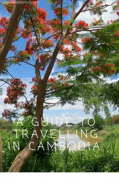 A Guide to Travelling in Cambodia | Travel, Beauty & Lifestyle blog | Wanderluce.com