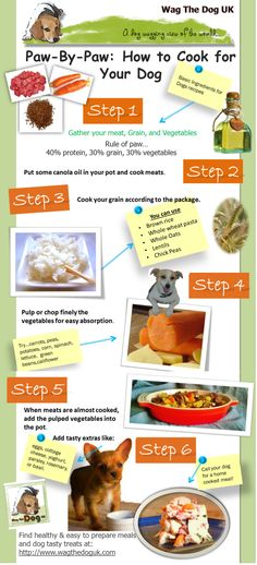 How to cook for your dog: Can you imagine how dull it would be to eat the same food every day out of a can? Why not treat your dog to some fresh lovingly made food right from your kitchen.