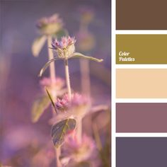 Palette of muted pastel shades. No screaming colors, only semitones: pinkish-violet, eggplant, pale salad green, and lavender. Despite the fact that all these colors are delicate and airy, the palette still looks very noble. It is a perfect choice for both a gentle girl and a mature woman. A living room decorated in these colors will be your favorite place in the house.