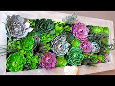 Découvrez comment fabriquer cette composition de succulentes qui permet de réaliser un superbe tableau végétal que vous n'aurez jamais besoin d'arroser ni d'entretenir. Cet atelier convient tout à fait aux débutants.