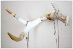 diy Deer antler jewelry holder or coat rack